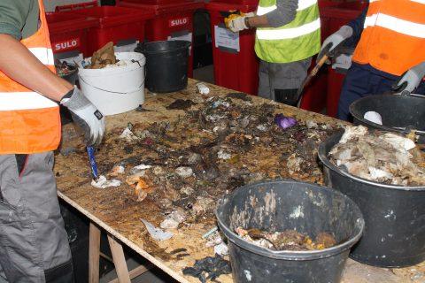 Waste sorting analysis