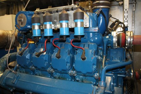 Biogas power engine