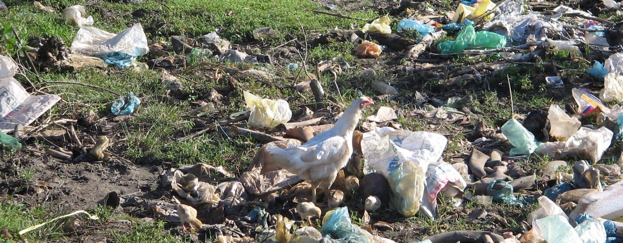 Renew project landfill